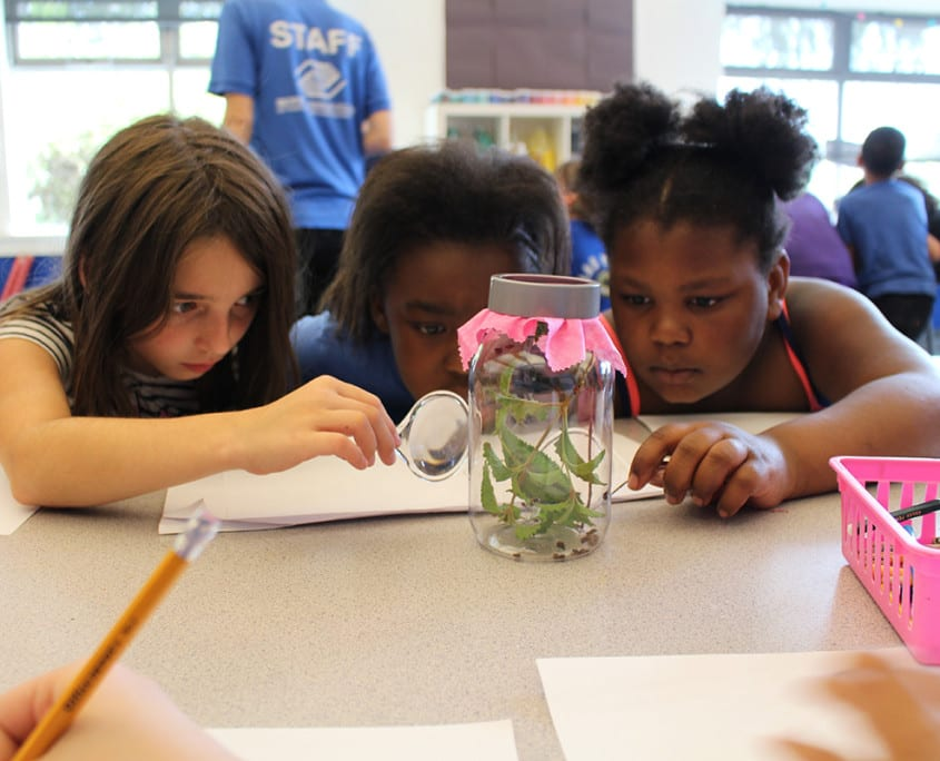 Summer Brain Gain encourages kids to learn, explore, and grow with hands-on activities.