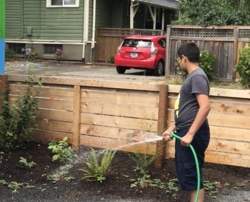 Boy in Minions t-shirt holds a garden hose and waters ferns and other plants next to a wooden fence, during Service Squad activities at the Inukai Family Boys & Girls Club.